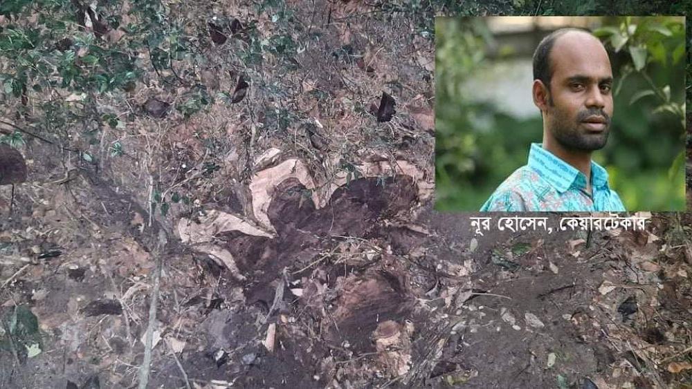 নকলায় ডাকবাংলোর কেয়ারটেকারের বিরুদ্ধে গাছ চুরির অভিযোগ